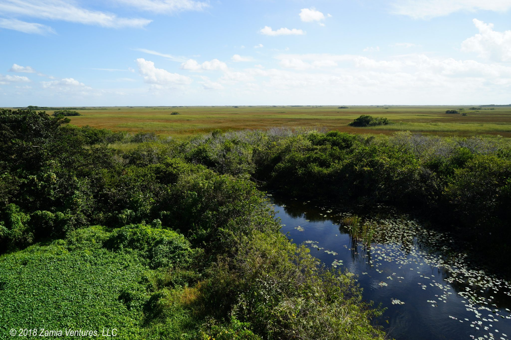 Enjoying the Silence at Shark Valley in Everglades NP