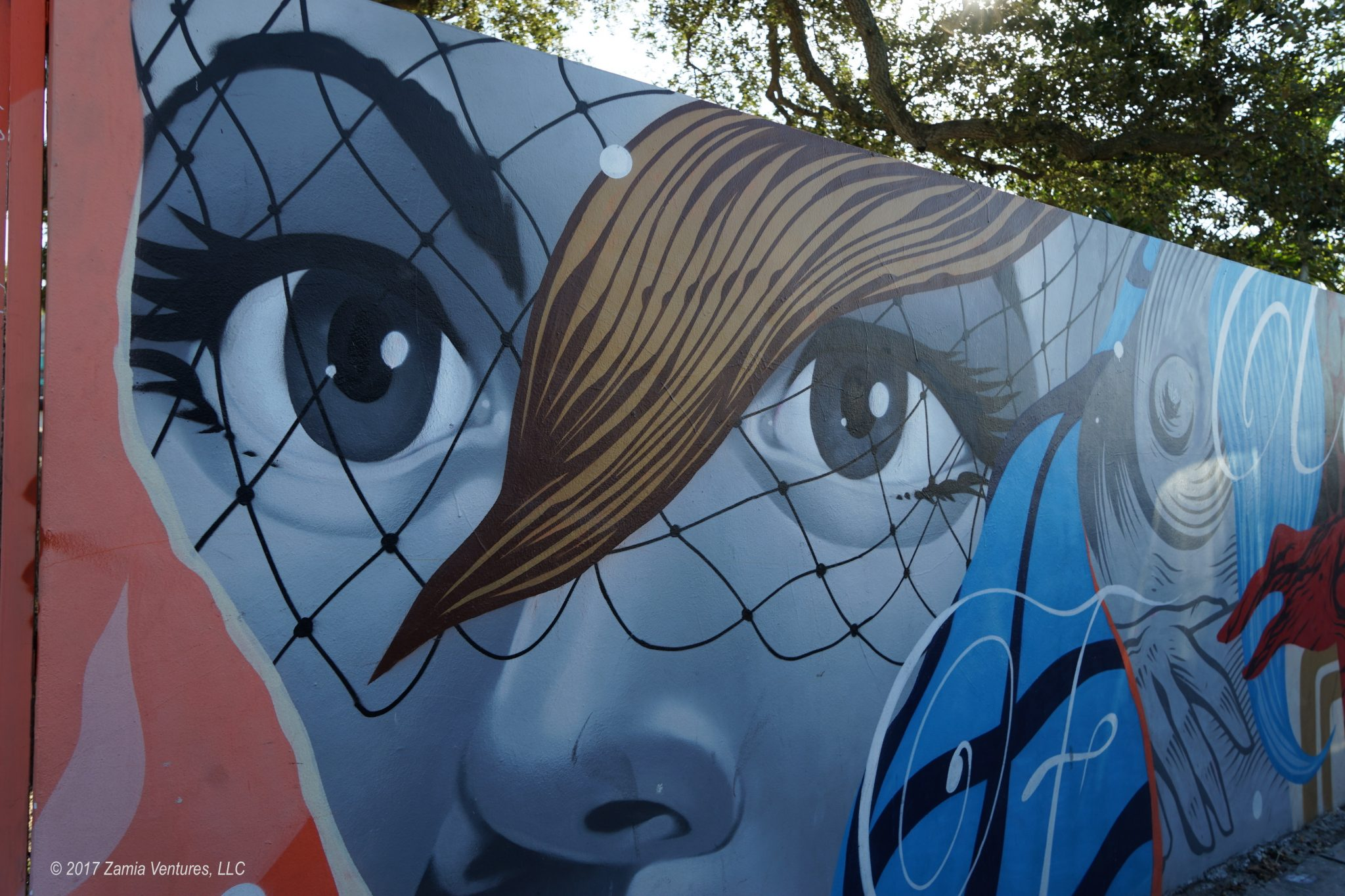 Learning About Street Art in Wynwood