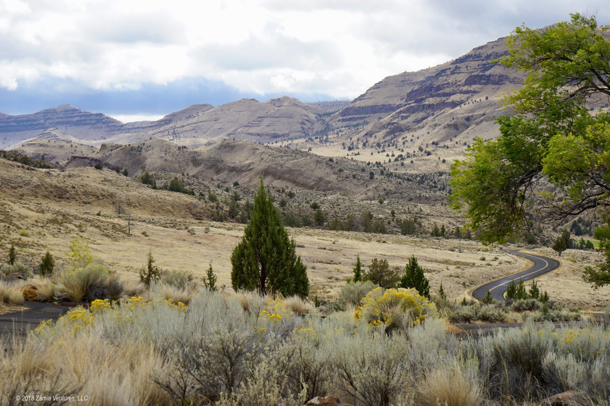 Strange Isolation at John Day Fossil Beds