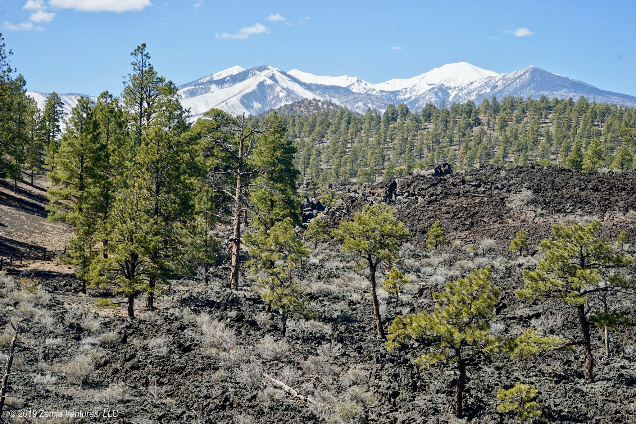 Punched in the Face by Shoulder Season in Flagstaff
