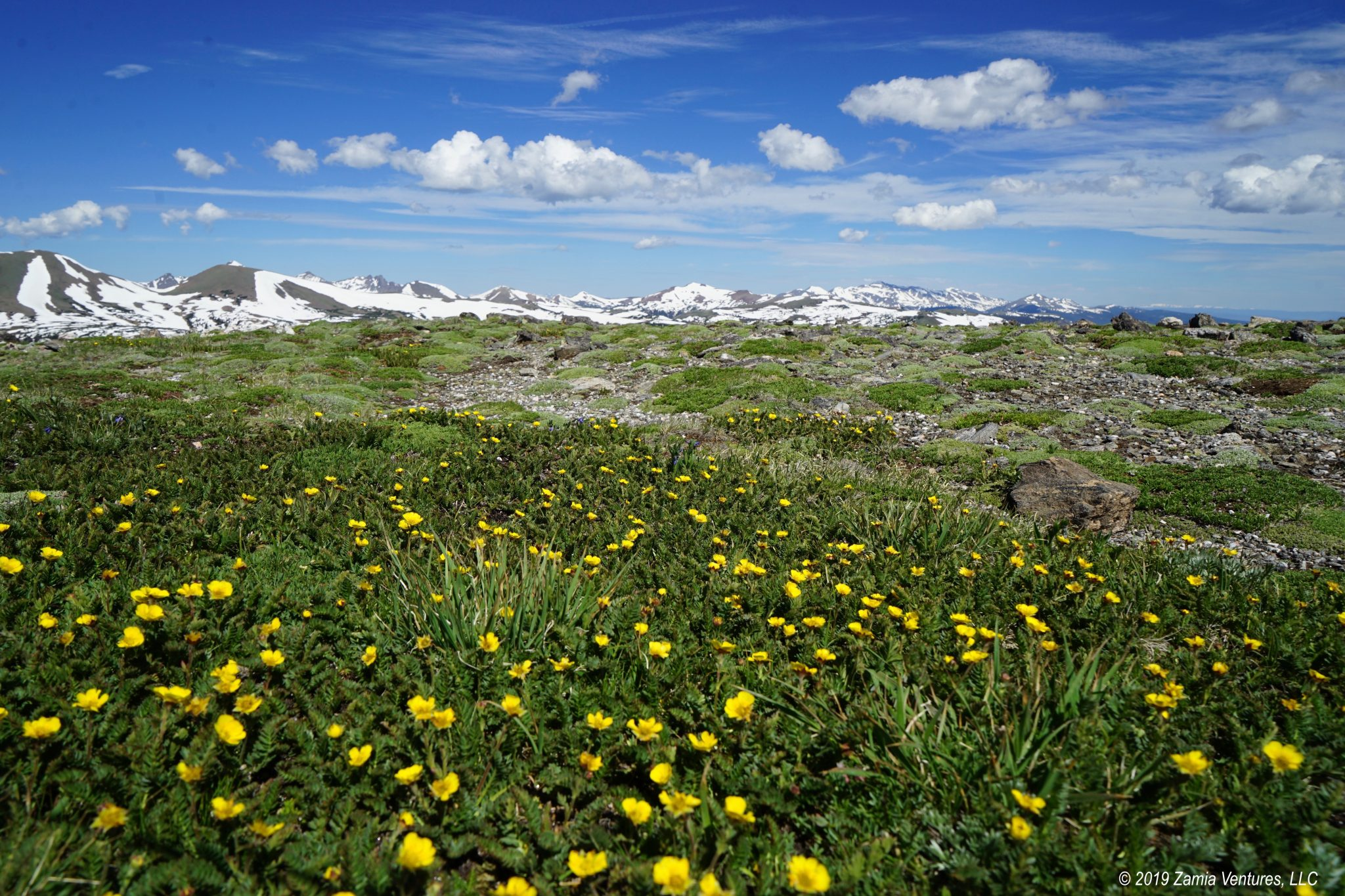 Independence Day Week at Stunning Rocky Mountain NP